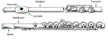 Image of flute sections